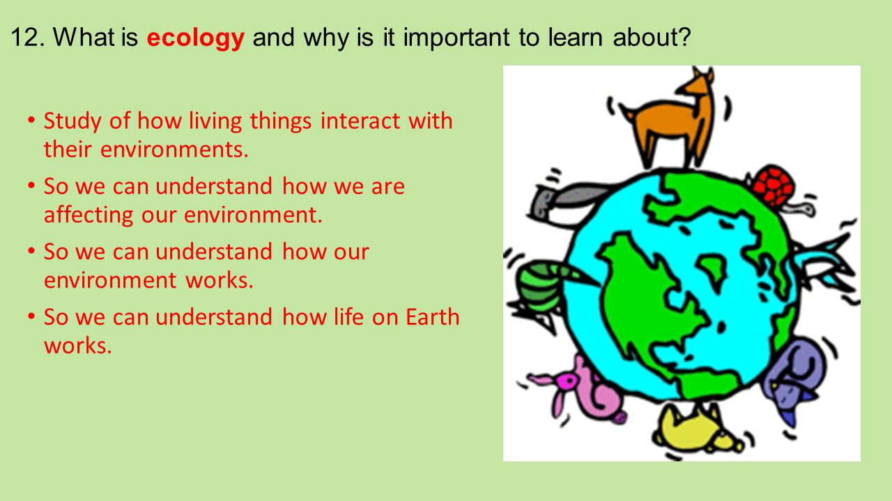 12. What is ecology and why is it important to learn about