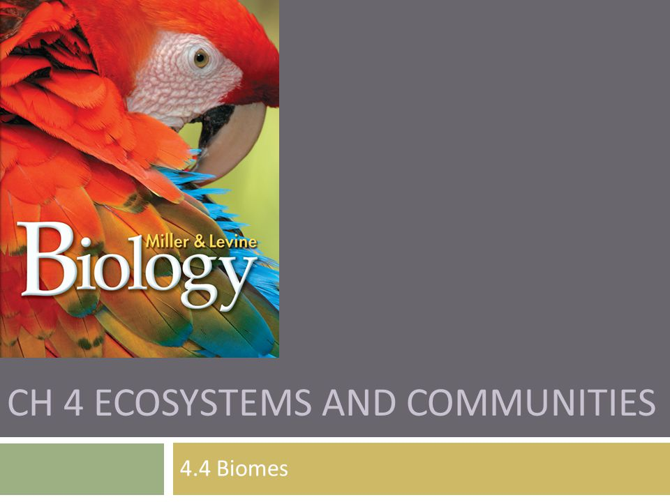 Ch 4 Ecosystems and Communities