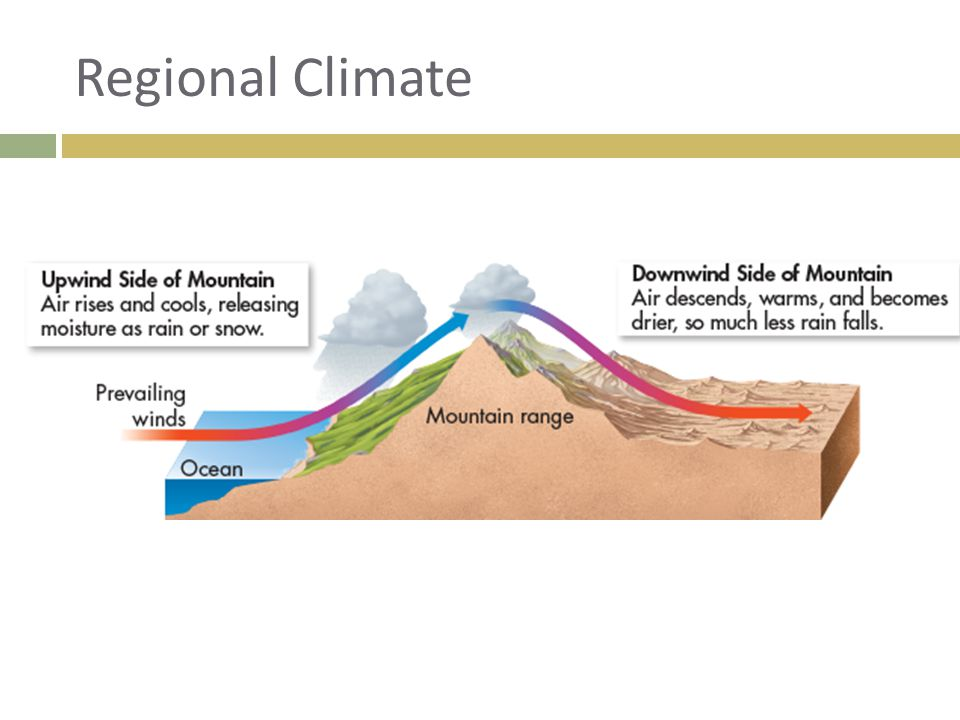 Regional Climate