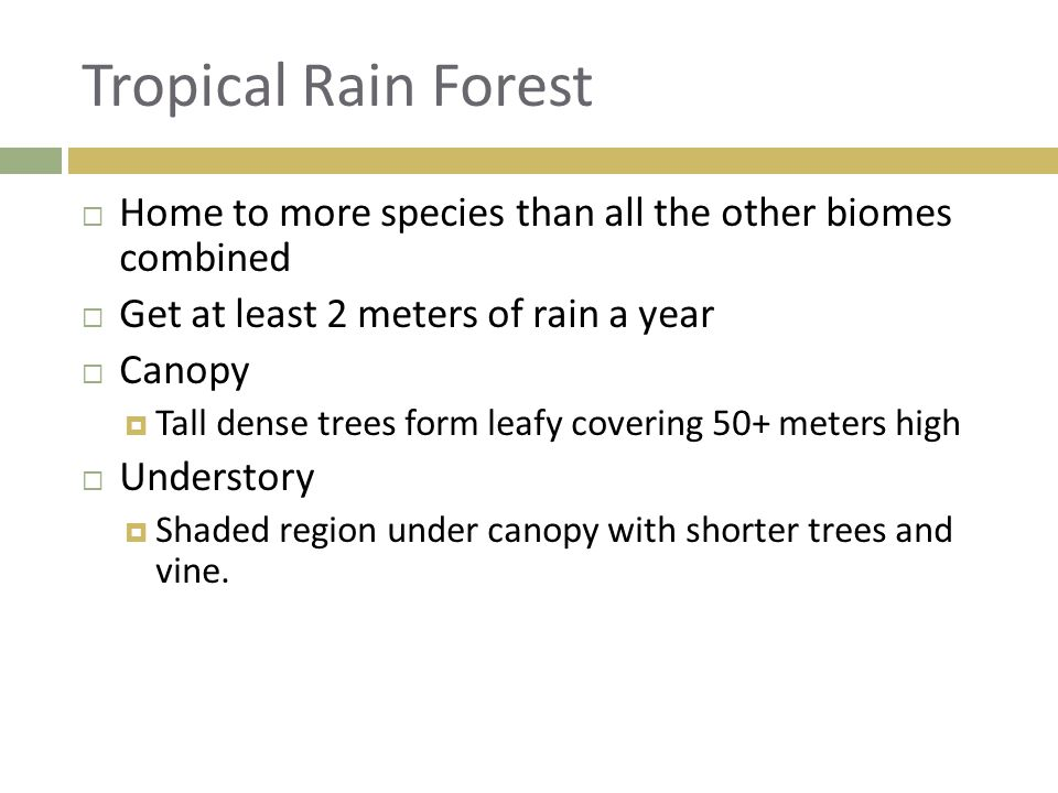 Tropical Rain Forest Home to more species than all the other biomes combined. Get at least 2 meters of rain a year.