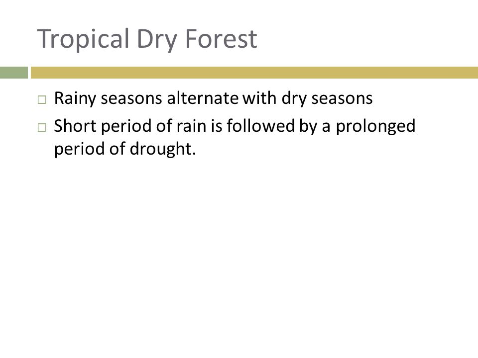 Tropical Dry Forest Rainy seasons alternate with dry seasons