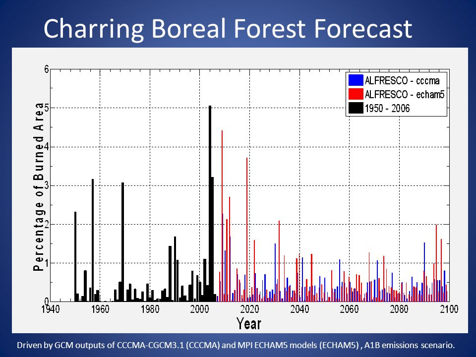Charring Boreal Forest Forecast