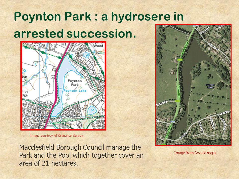 Poynton Park : a hydrosere in arrested succession.