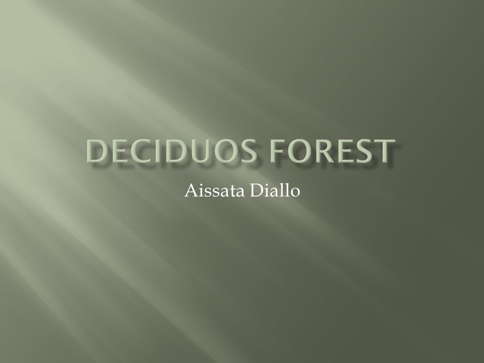 Deciduos forest Aissata Diallo