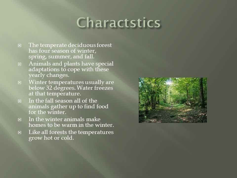 Charactstics The temperate deciduous forest has four season of winter, spring, summer, and fall.