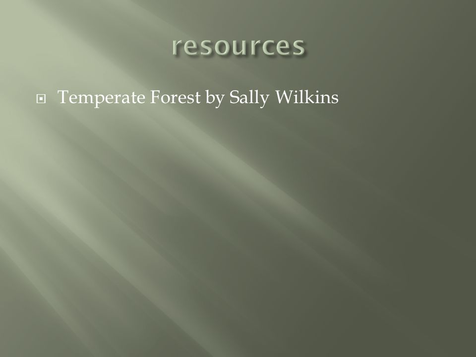 resources Temperate Forest by Sally Wilkins