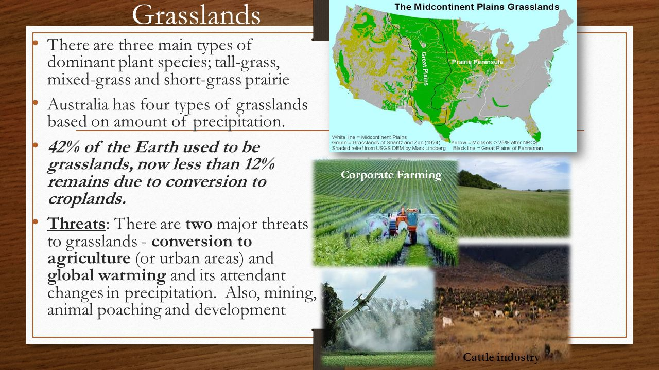 Grasslands There are three main types of dominant plant species; tall-grass, mixed-grass and short-grass prairie.