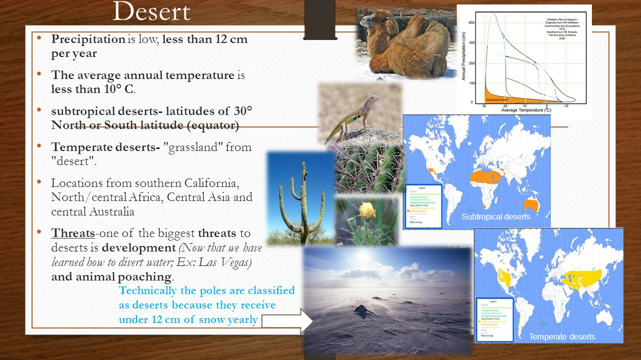 Desert Precipitation is low, less than 12 cm per year