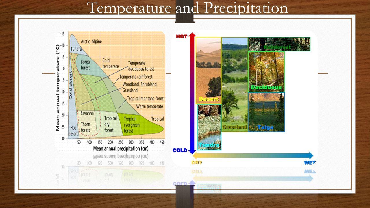 Temperature and Precipitation