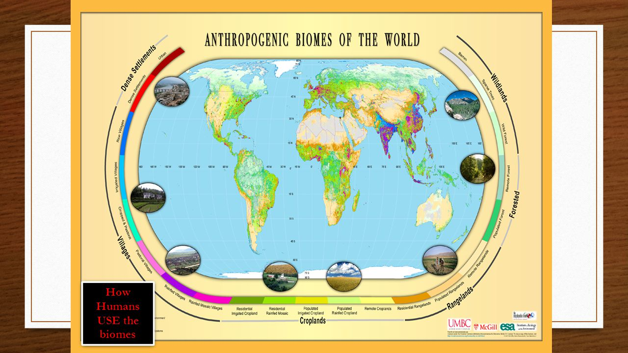 How Humans USE the biomes