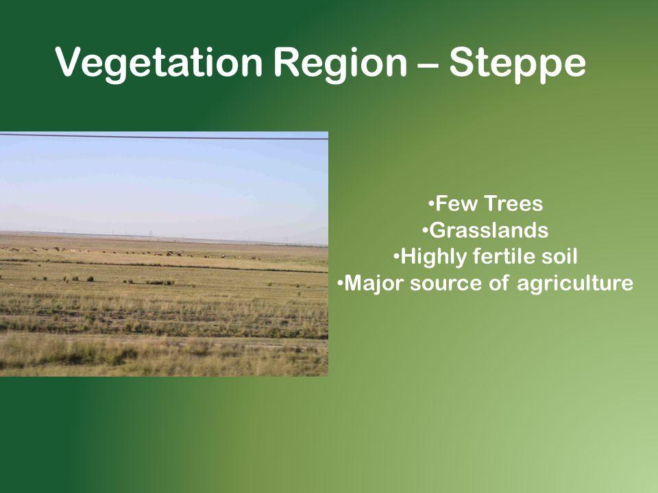 Vegetation Region – Steppe