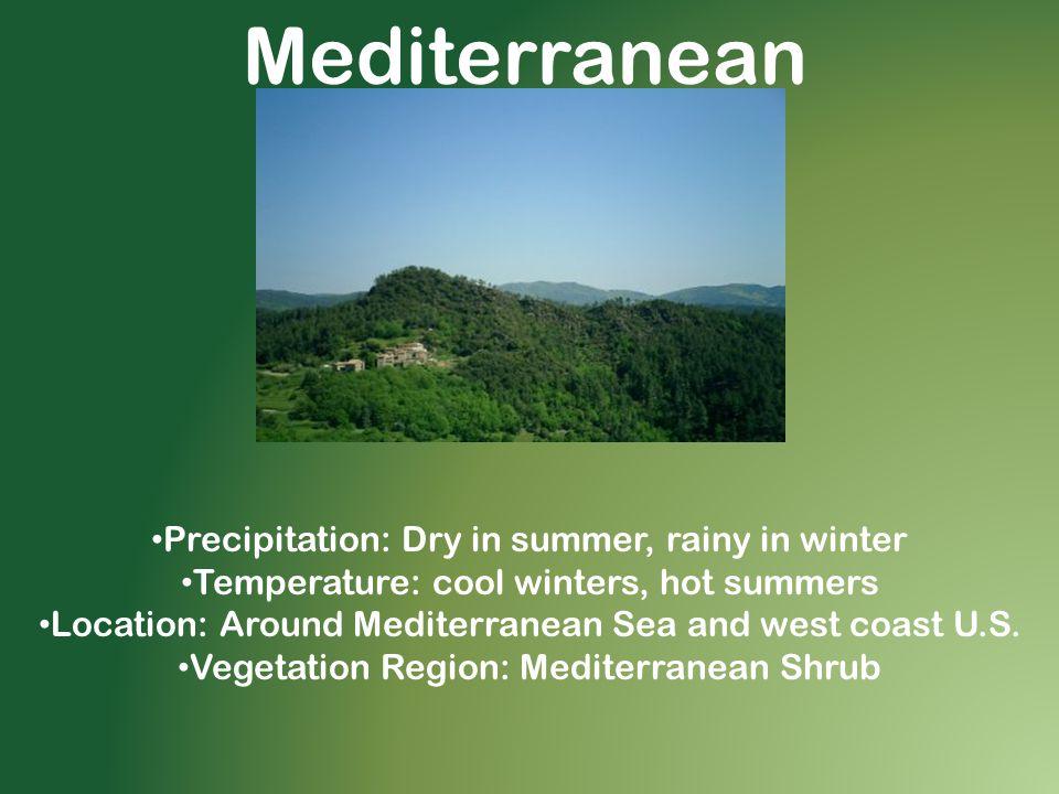 Mediterranean Precipitation: Dry in summer, rainy in winter