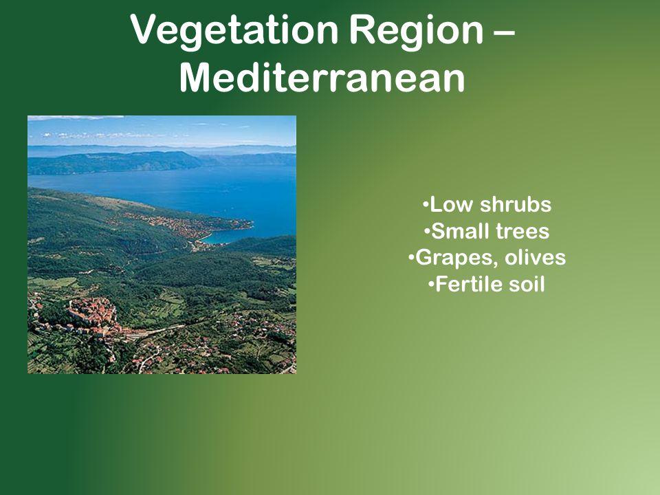 Vegetation Region – Mediterranean