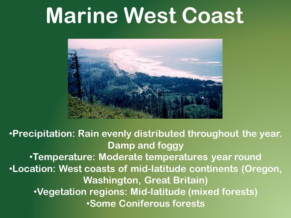 Marine West Coast Precipitation: Rain evenly distributed throughout the year. Damp and foggy. Temperature: Moderate temperatures year round.