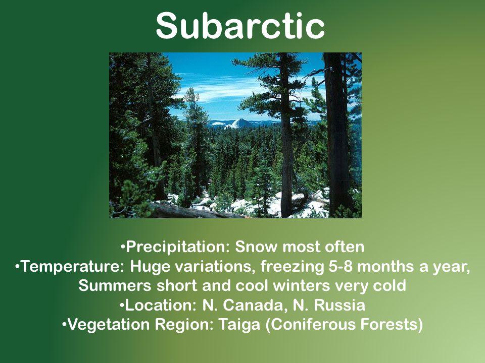 Subarctic Precipitation: Snow most often