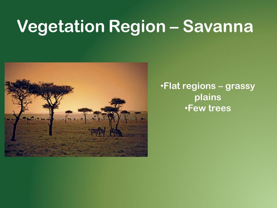 Vegetation Region – Savanna