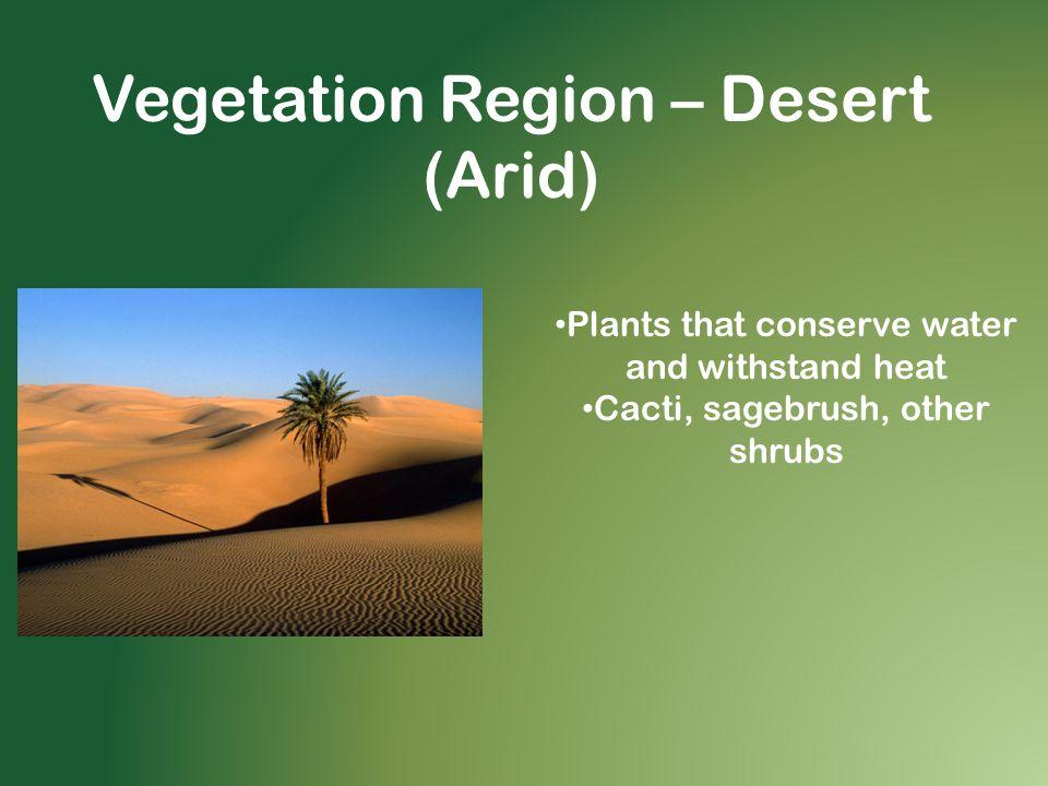 Vegetation Region – Desert (Arid)
