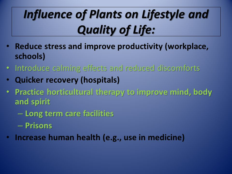 Influence of Plants on Lifestyle and Quality of Life: