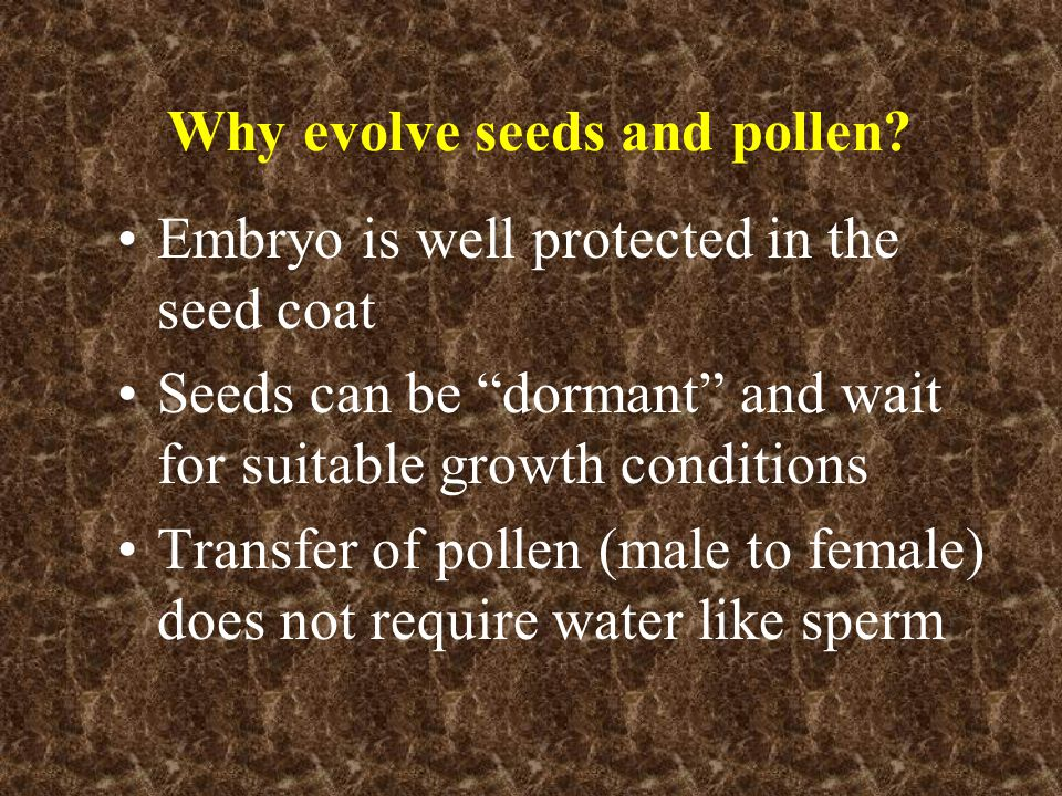 Why evolve seeds and pollen