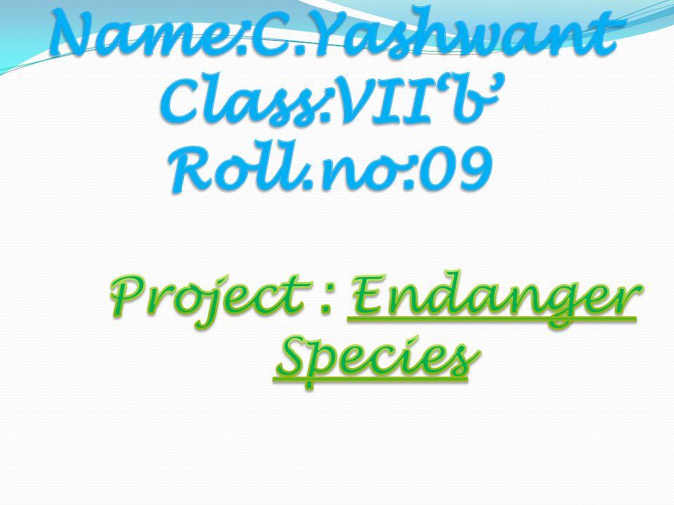 Name:C.Yashwant Class:VII'b' Roll.no:09