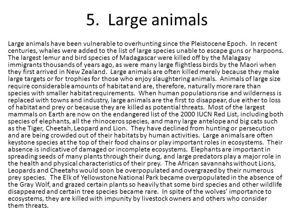 5. Large animals