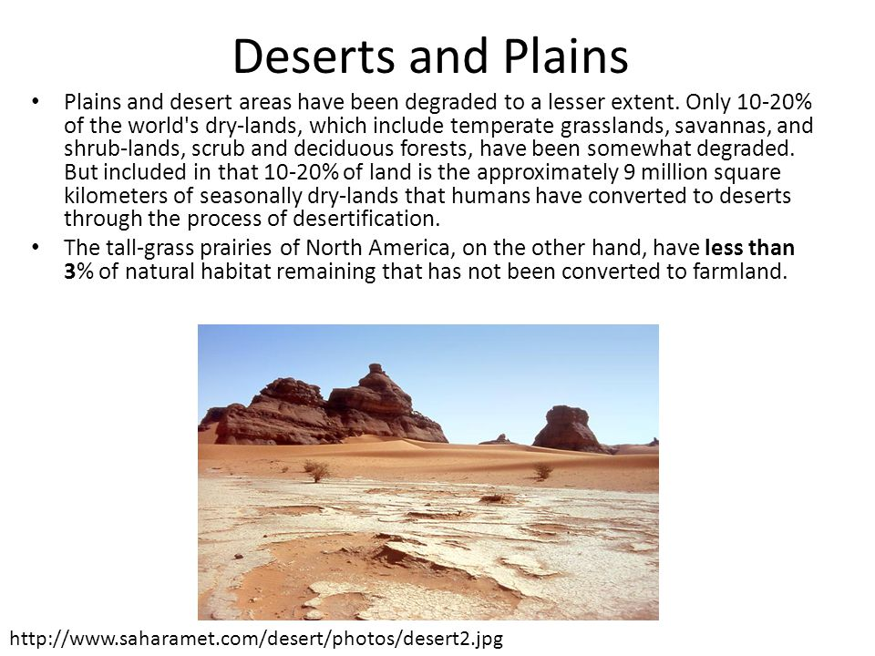 Deserts and Plains