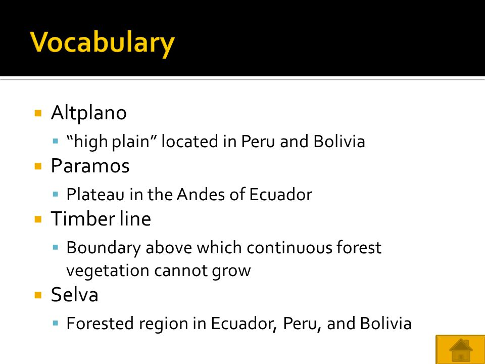 Vocabulary Altplano Paramos Timber line Selva