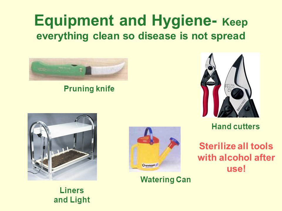 Equipment and Hygiene- Keep everything clean so disease is not spread