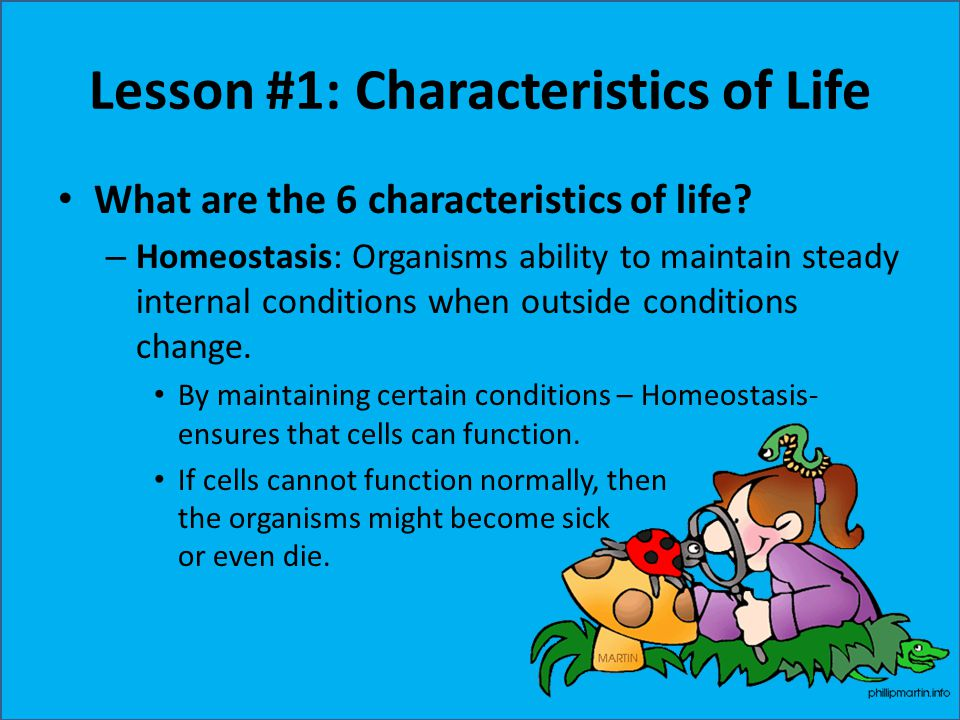 Lesson #1: Characteristics of Life