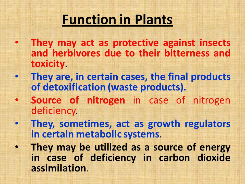 Function in Plants They may act as protective against insects and herbivores due to their bitterness and toxicity.