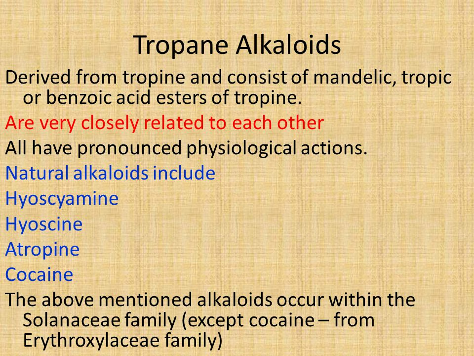 Tropane Alkaloids Derived from tropine and consist of mandelic, tropic or benzoic acid esters of tropine.