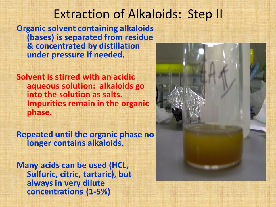 Extraction of Alkaloids: Step II