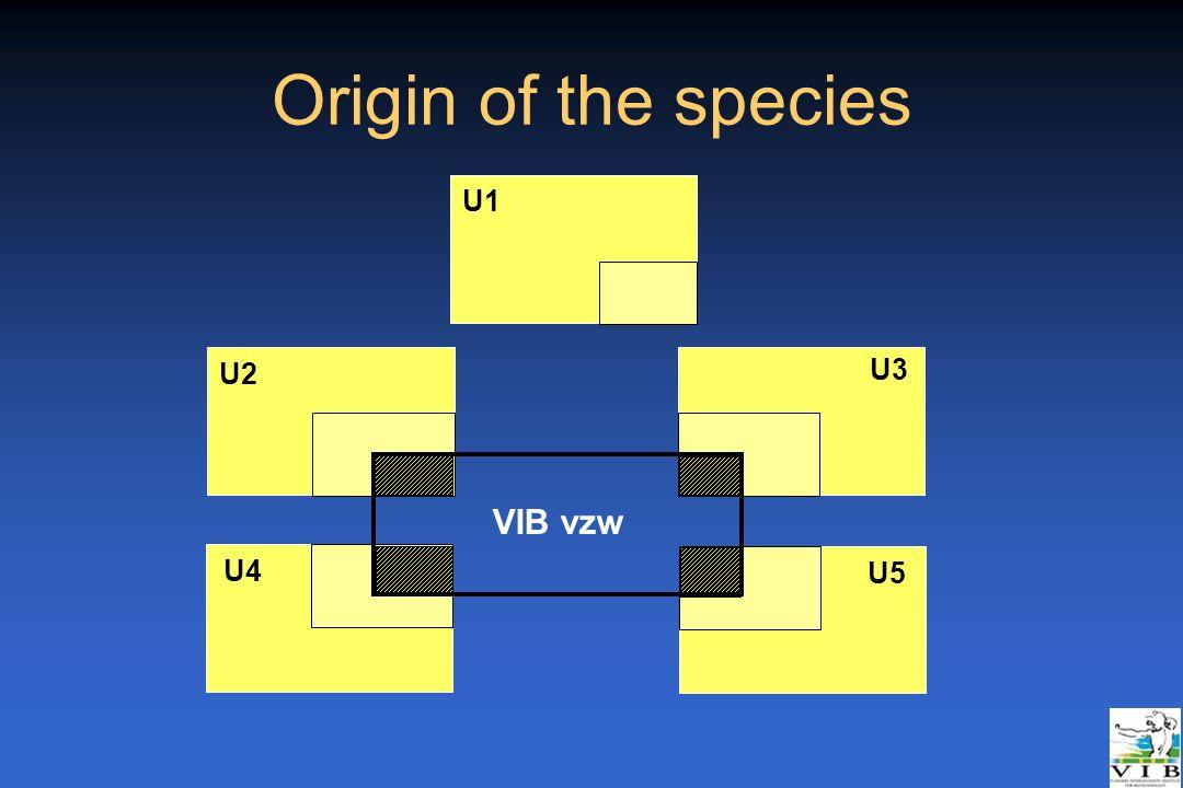 Origin of the species U1 U2 U3 VIB vzw U4 U5 _Rotterdam 21/04/05
