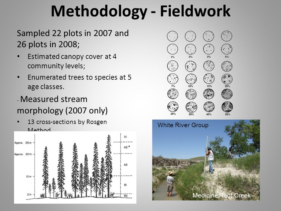 Methodology - Fieldwork