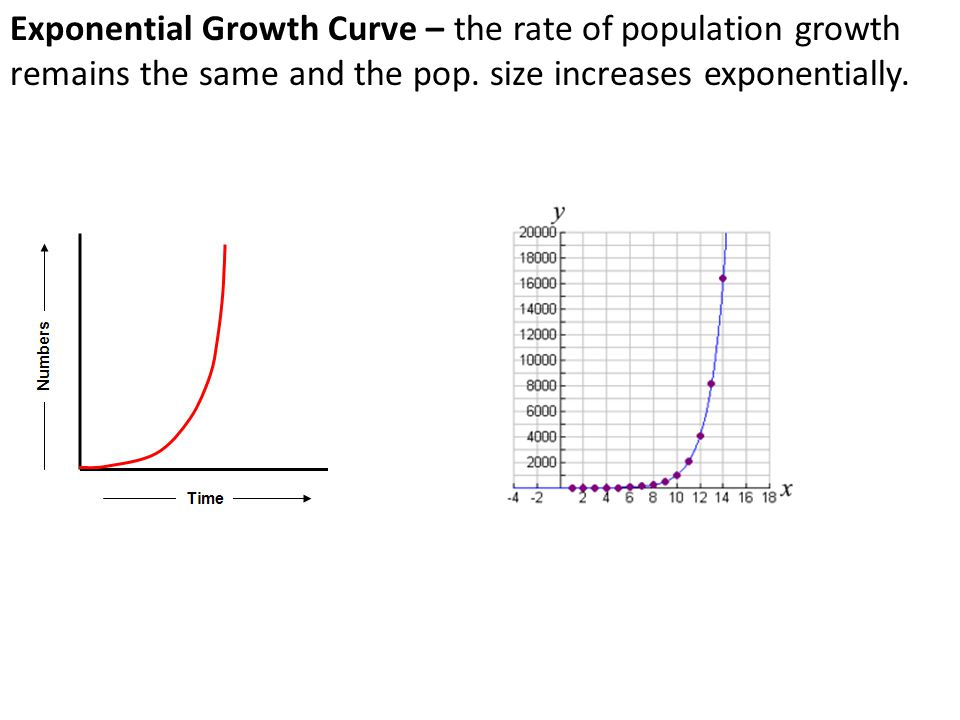 Exponential Growth Curve – the rate of population growth remains the same and the pop.