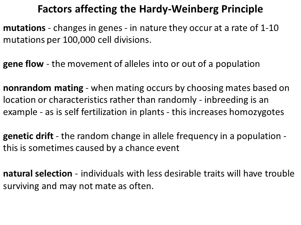 Factors affecting the Hardy-Weinberg Principle