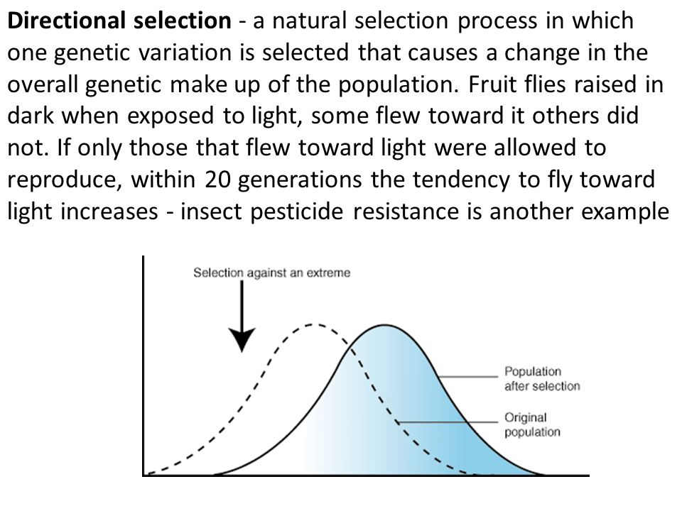 Directional selection - a natural selection process in which one genetic variation is selected that causes a change in the overall genetic make up of the population.