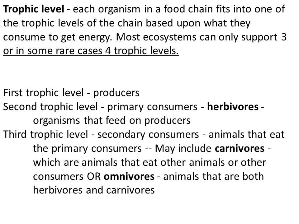 Trophic level - each organism in a food chain fits into one of the trophic levels of the chain based upon what they consume to get energy. Most ecosystems can only support 3 or in some rare cases 4 trophic levels.