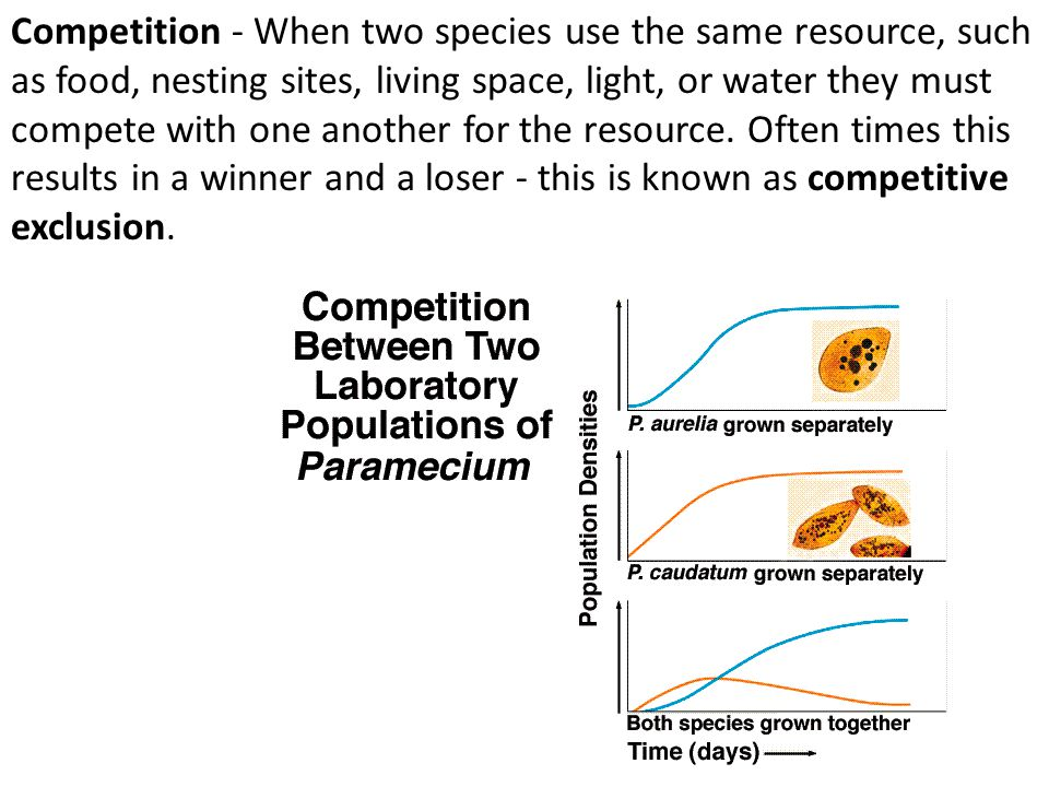 Competition - When two species use the same resource, such as food, nesting sites, living space, light, or water they must compete with one another for the resource.