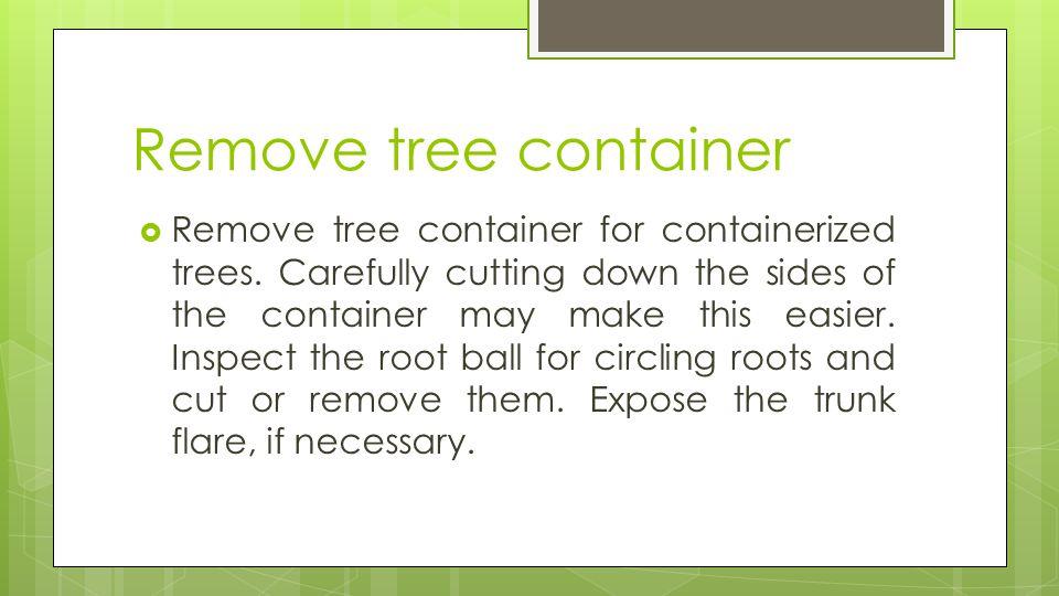 Remove tree container