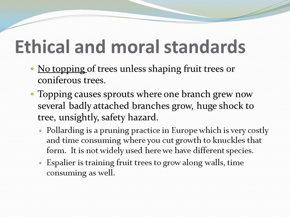 Ethical and moral standards