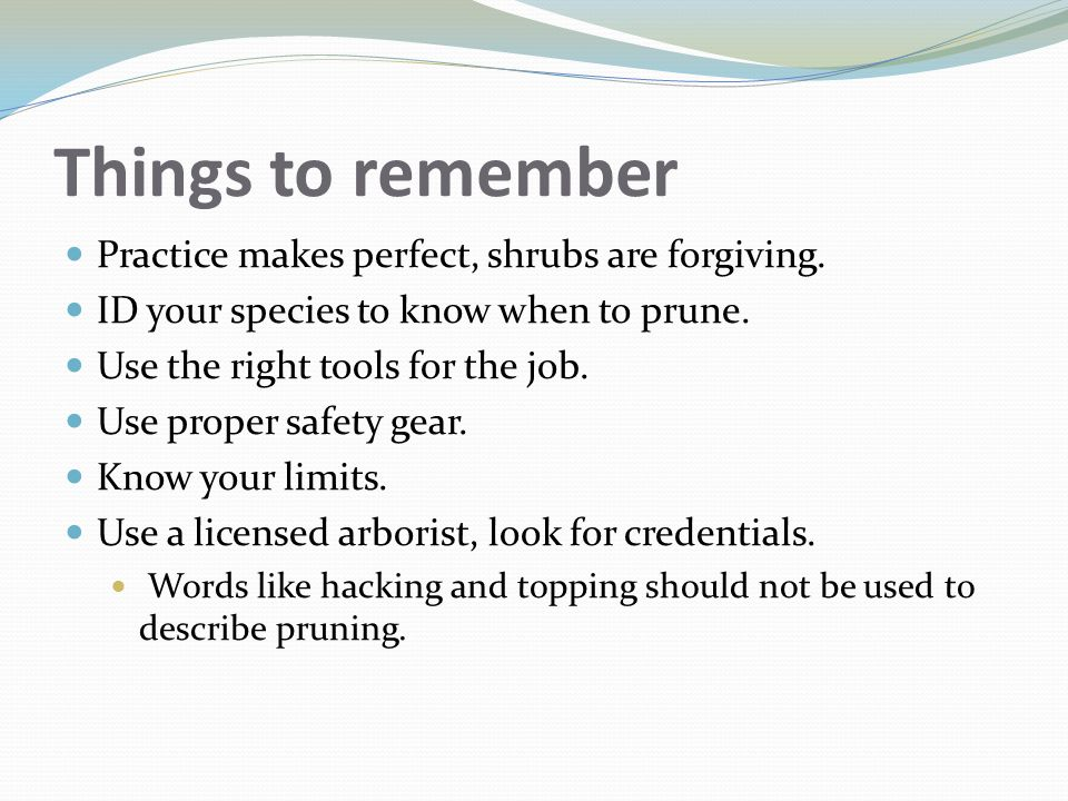 Things to remember Practice makes perfect, shrubs are forgiving.