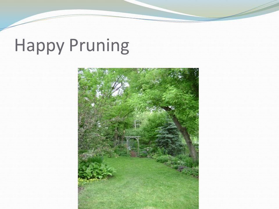 Happy Pruning
