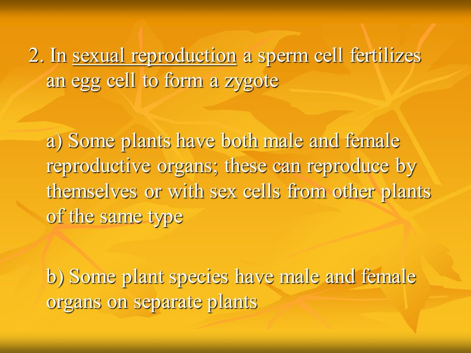 b) Some plant species have male and female organs on separate plants