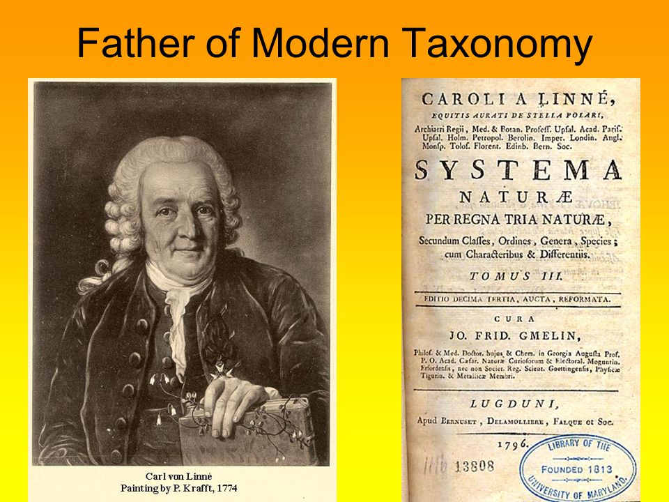 Father of Modern Taxonomy