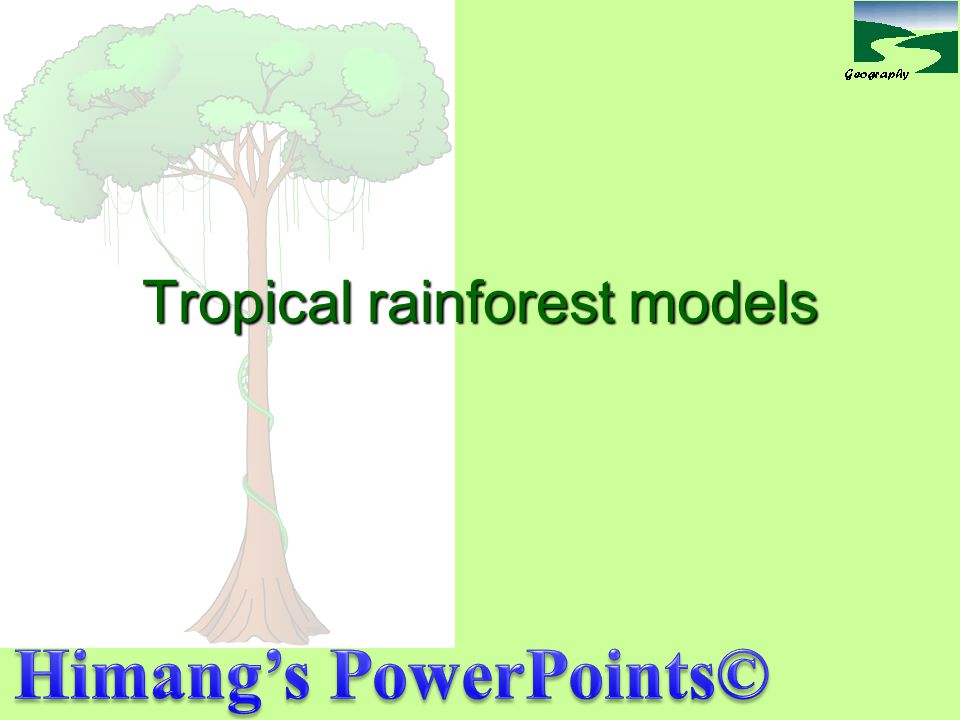 Tropical rainforest models