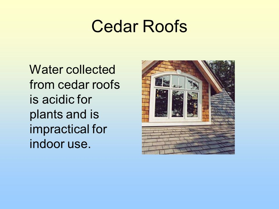 Cedar Roofs Water collected from cedar roofs is acidic for plants and is impractical for indoor use.