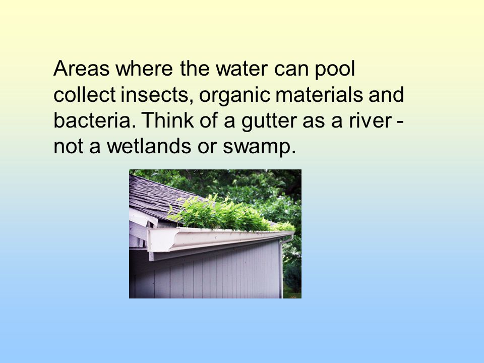 Areas where the water can pool collect insects, organic materials and bacteria.