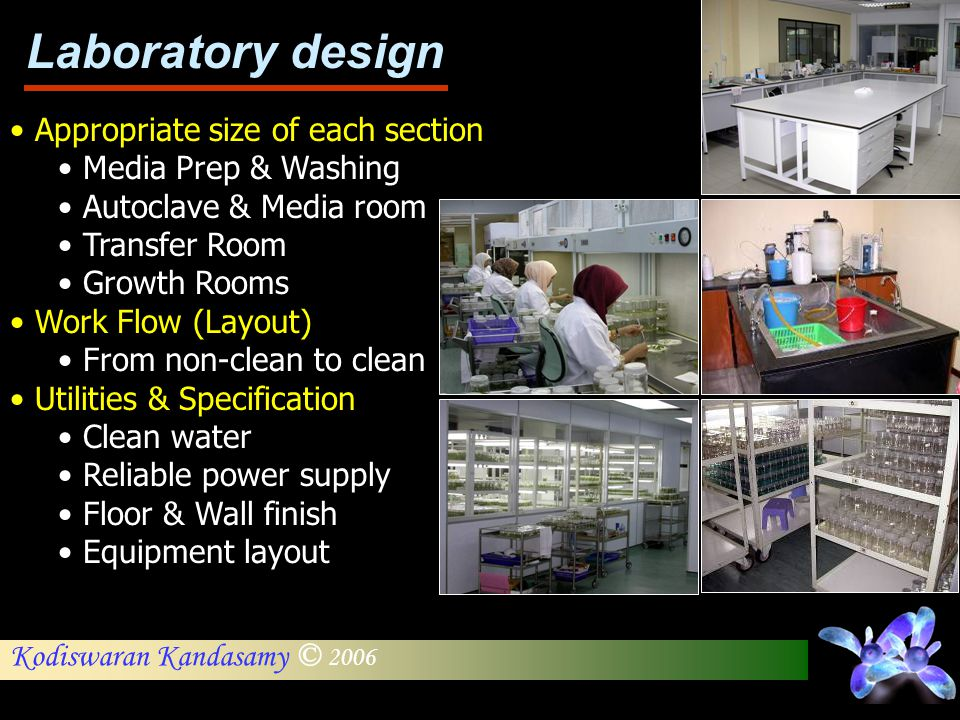 Laboratory design Appropriate size of each section