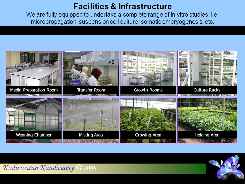 Facilities & Infrastructure
